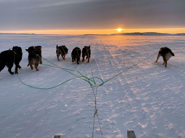 Dogsledding in Nunavut